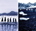 Through The Ice, Darkly series, lenticular